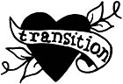 Transition Gallery Logo